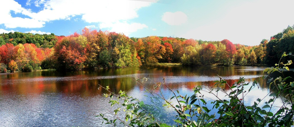 Panorama of a local lake in the Autumn
