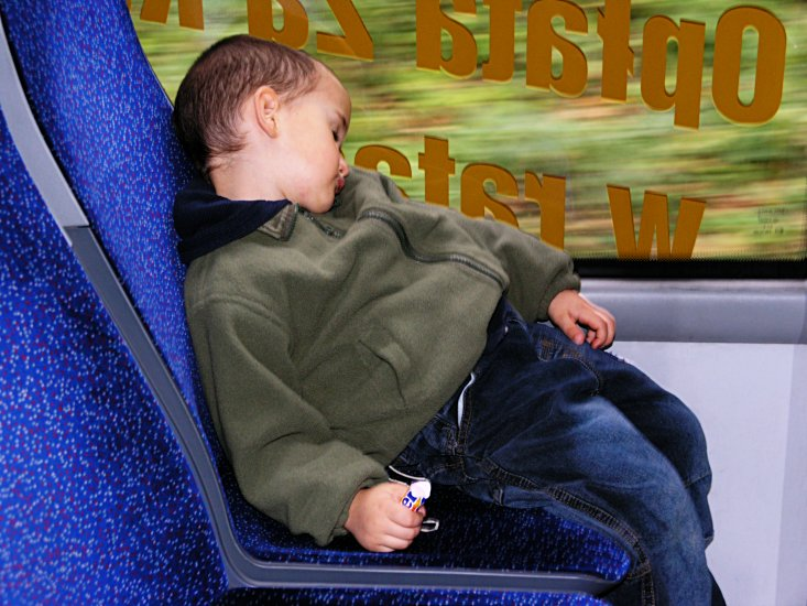 Polish boy asleep on train