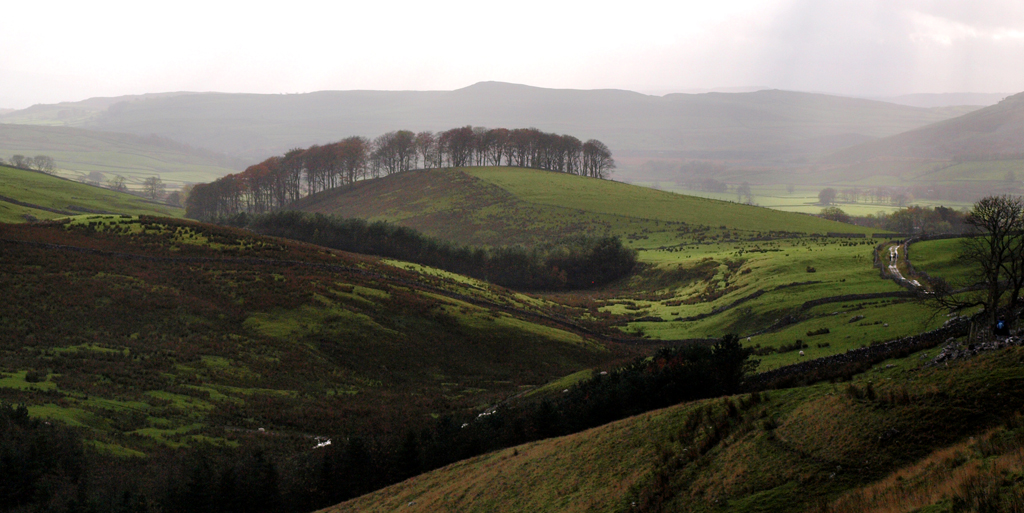 Pennine View