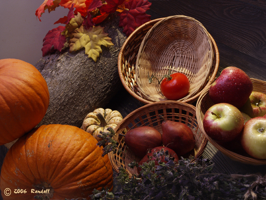 Fall Colours Still Life #050