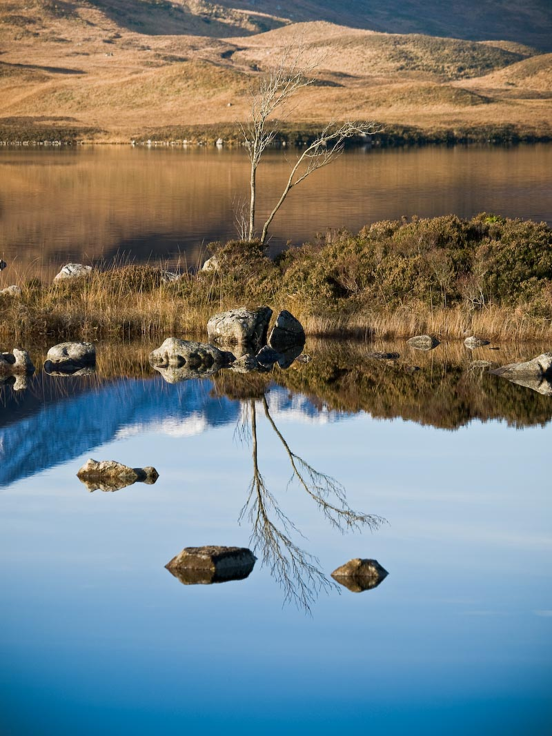 Double take on Rannoch Moor