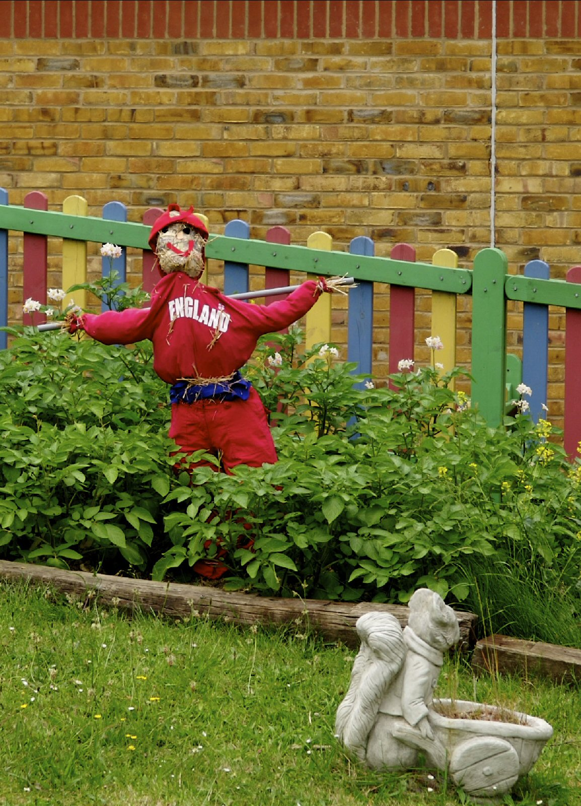 Scarecrow in potato patch