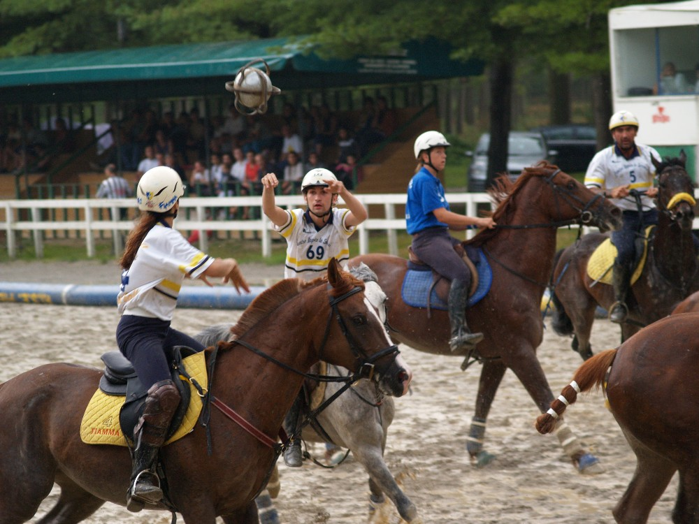 In action 2 (Horse ball)