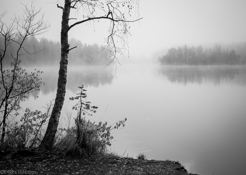 Autumn by a smaal lake 2