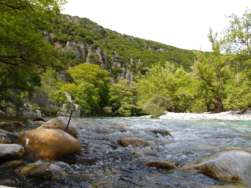 quiet waters in the Voidomatis