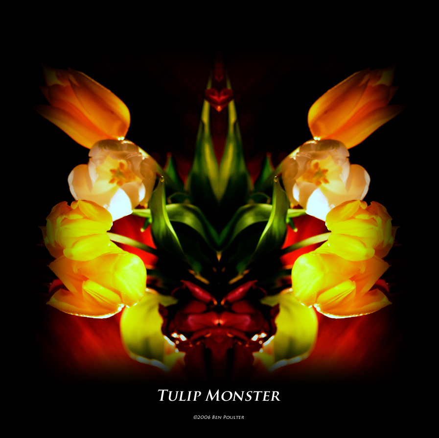 Tulip Monster