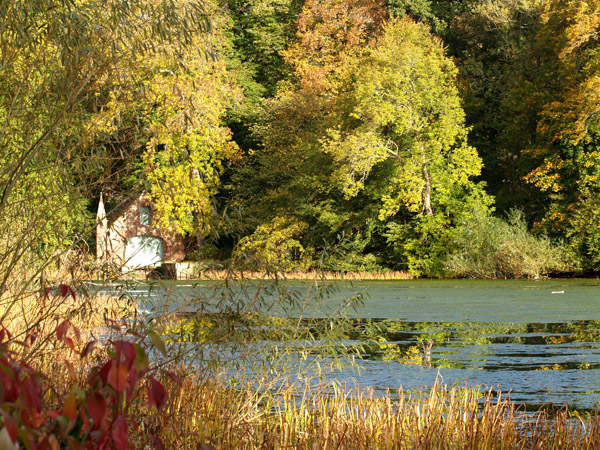Autumn on Fyvie Loch
