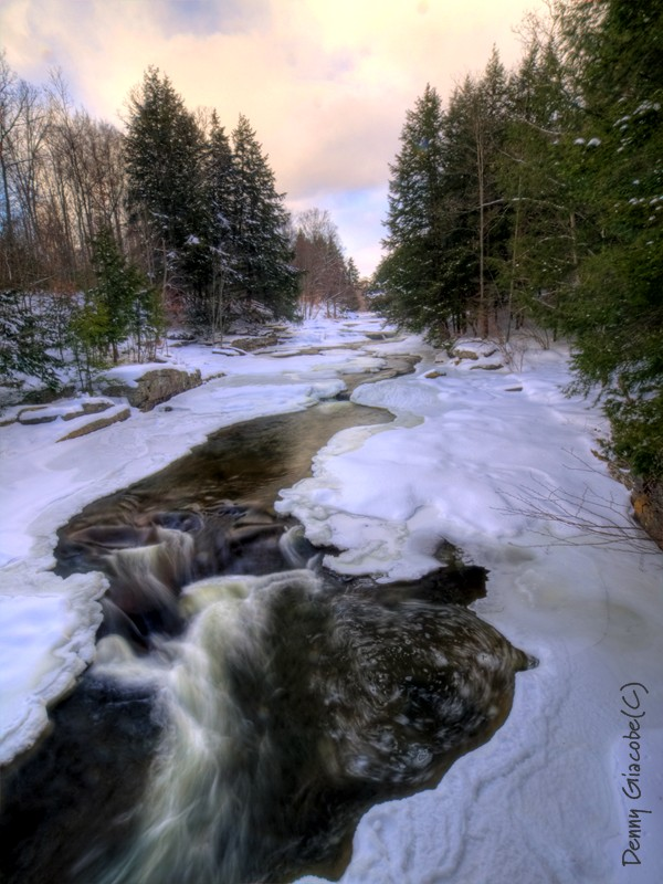 Winter Stream