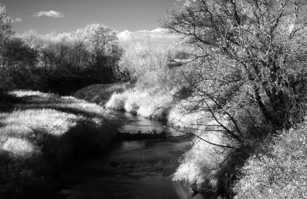 Infrared (2)