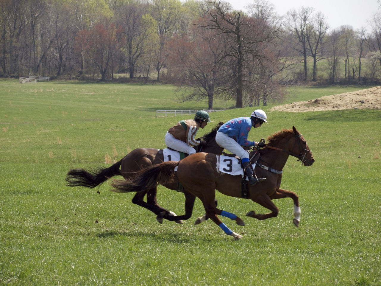 Old Dominion Hunt Point to Point