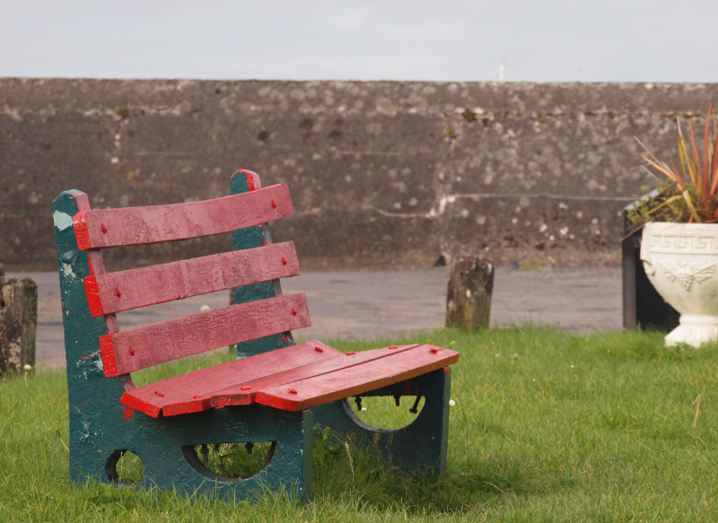 Rainy Day Bench